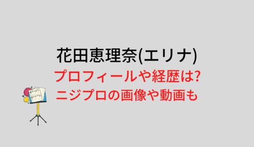 花田恵理奈(エリナ)のプロフィールや経歴は?ニジプロの画像や動画も