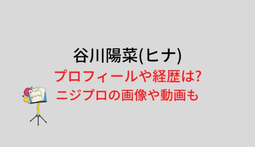 谷川陽菜(ヒナ)のプロフィールや経歴は?ニジプロの画像や動画も