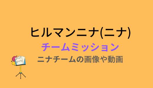 ヒルマンニナ/チームミッションの結果と評価まとめ!動画もチェック